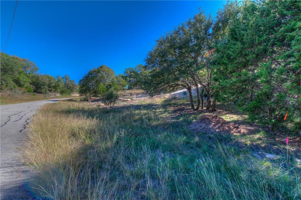 Sold Property | Lot 30 $ 31 Silver Spur Dr Drive Dripping Springs, TX 78620 4