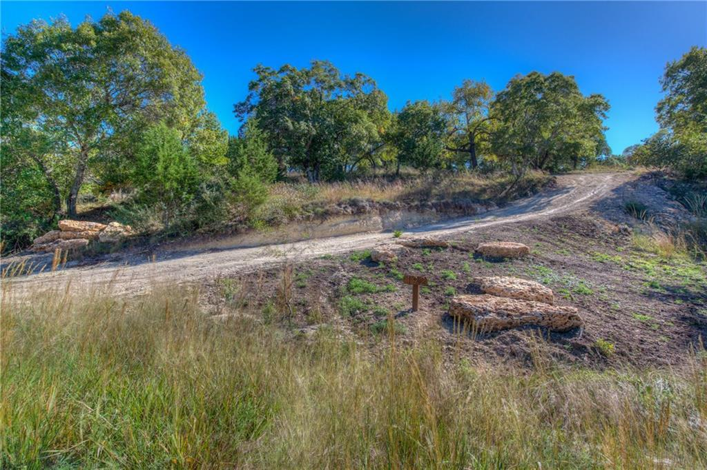 Sold Property | Lot 30 $ 31 Silver Spur Dr Drive Dripping Springs, TX 78620 5