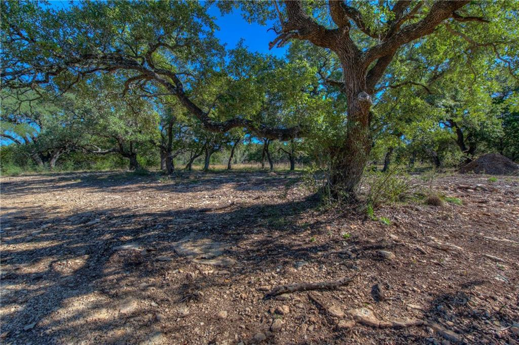 Sold Property | Lot 30 $ 31 Silver Spur Dr Drive Dripping Springs, TX 78620 9