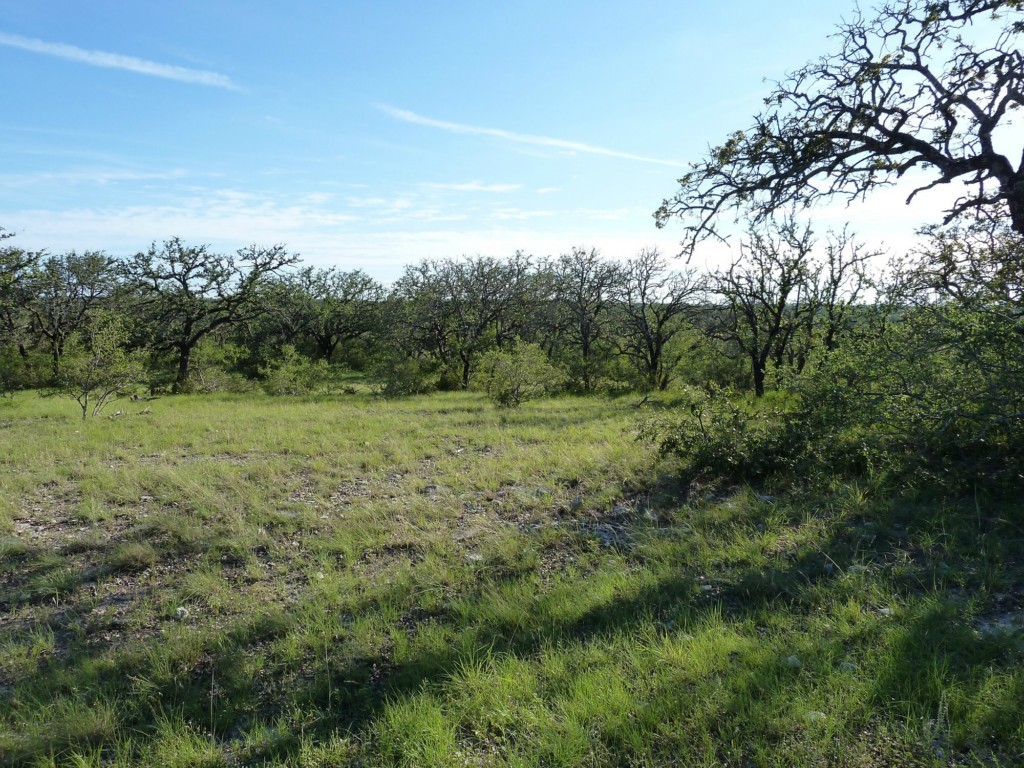 Sold Property | 26808 Hamilton Pool Road Cypress Mill, TX 78663 13