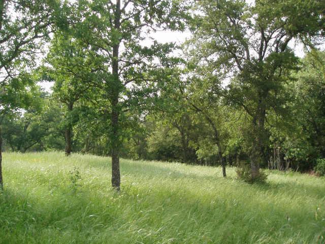 Sold Property | 3 White Dove Trail Denison, Texas 75020 1