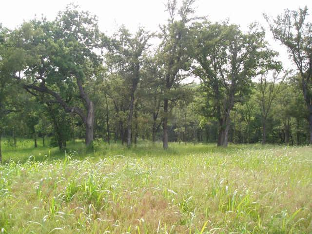 Sold Property | 4 White Dove Trail Denison, Texas 75020 1