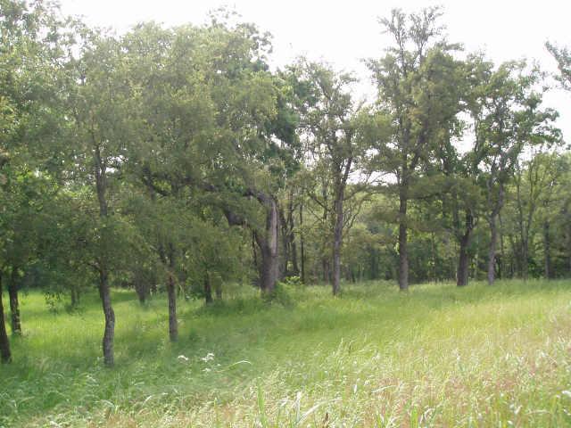 Sold Property | 4 White Dove Trail Denison, Texas 75020 2