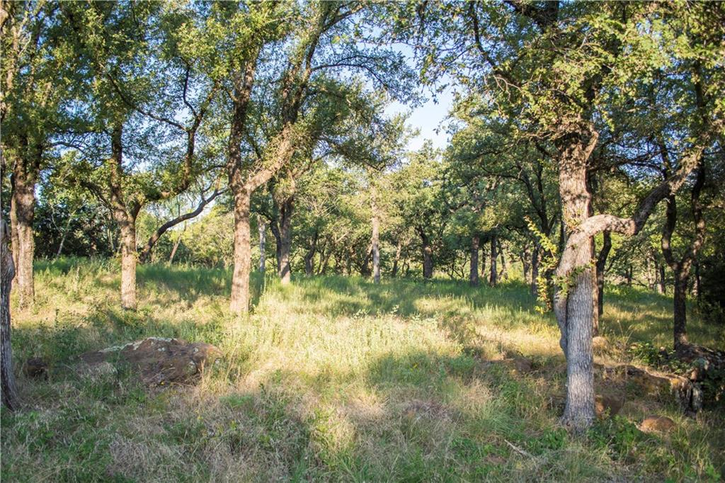 Sold Property | D13R Canvasback Cir. Gordon, TX 76453 13