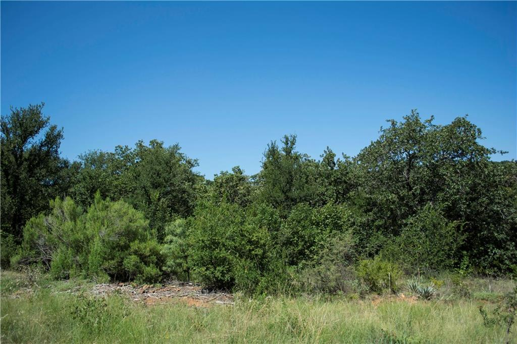 Sold Property | D13R Canvasback Cir. Gordon, TX 76453 4