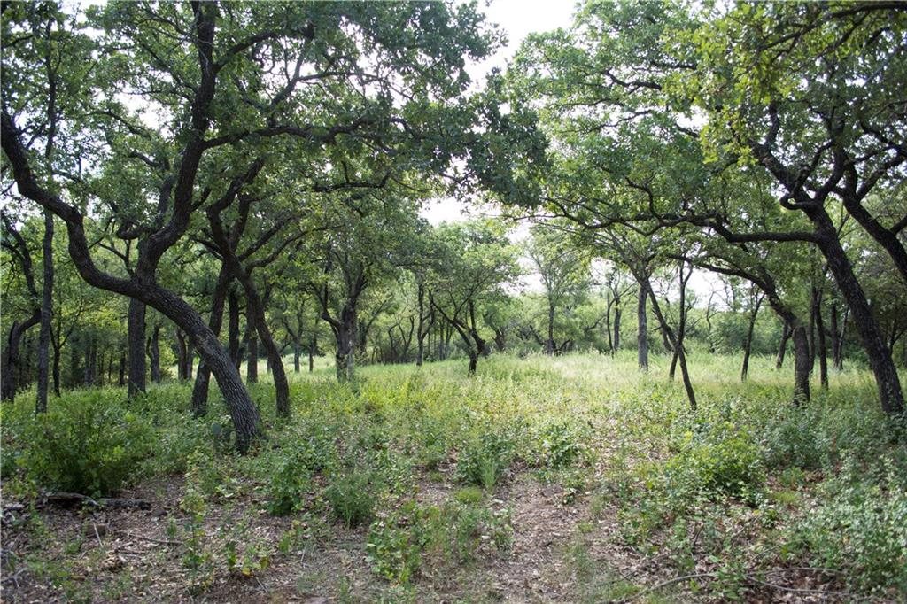Sold Property | D13R Canvasback Cir. Gordon, TX 76453 7