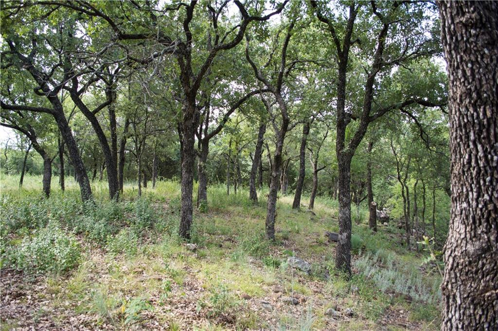 Sold Property | D13R Canvasback Cir. Gordon, TX 76453 8