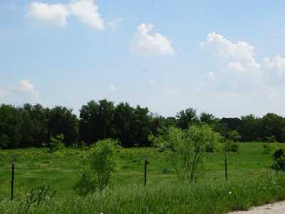 Sold Property   176 County Road 3525  Paradise, Texas 76073 13