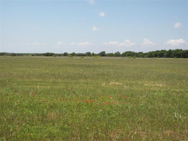 Sold Property | 0 Hwy 289  Gunter, Texas 75058 2