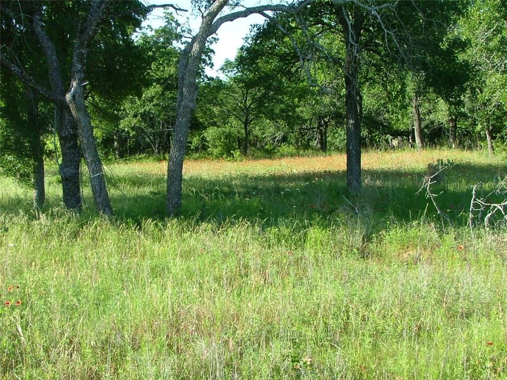 Active | L 228 Ridgeline Drive Chico, Texas 76431 0