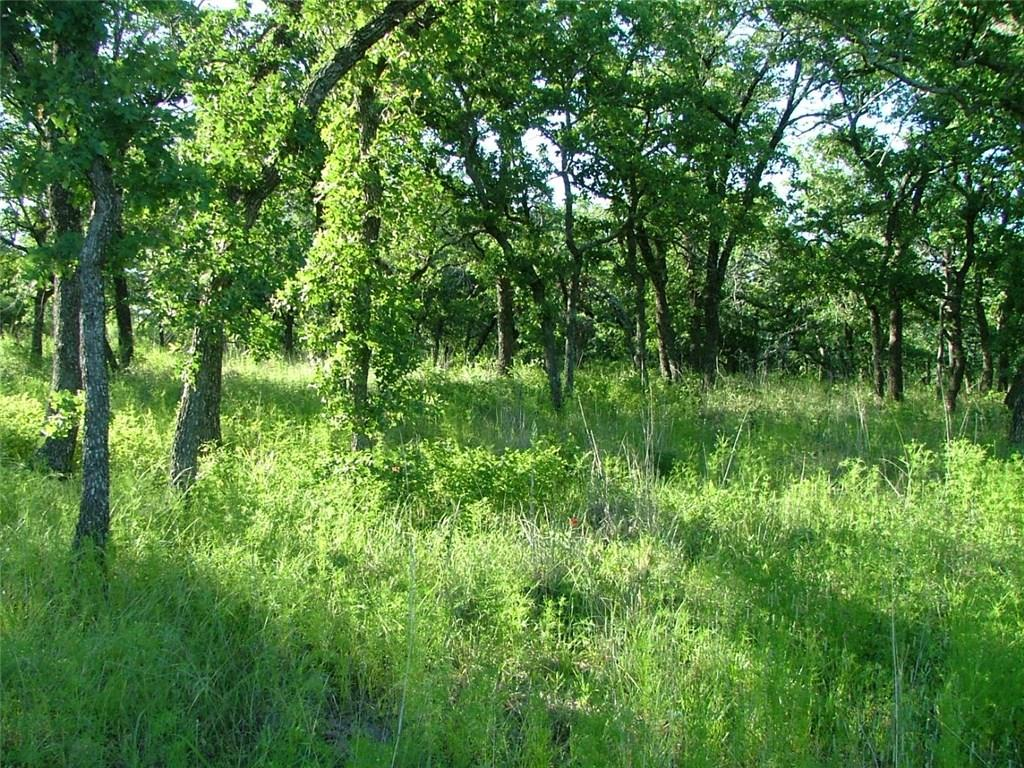 Active | L 228 Ridgeline Drive Chico, TX 76431 1