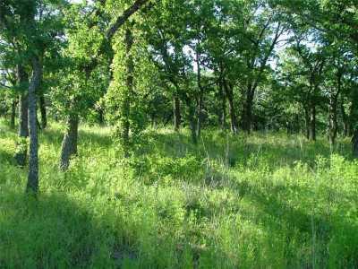 Active | L 228 Ridgeline Drive Chico, Texas 76431 1