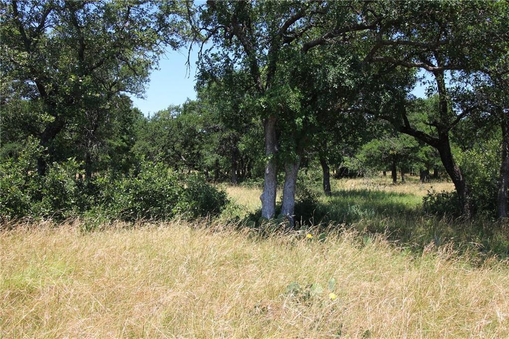Active | L 228 Ridgeline Drive Chico, TX 76431 4