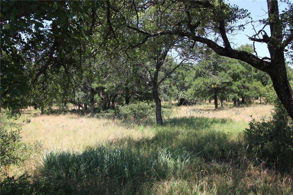 Active | L 228 Ridgeline Drive Chico, TX 76431 6