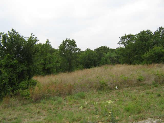 Sold Property | 240 AUTUMNWOOD Drive Mineral Wells, Texas 76067 1