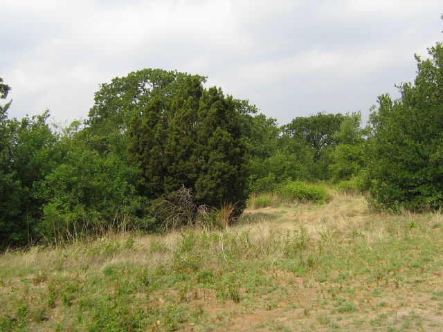 Sold Property | 240 AUTUMNWOOD Drive Mineral Wells, Texas 76067 3