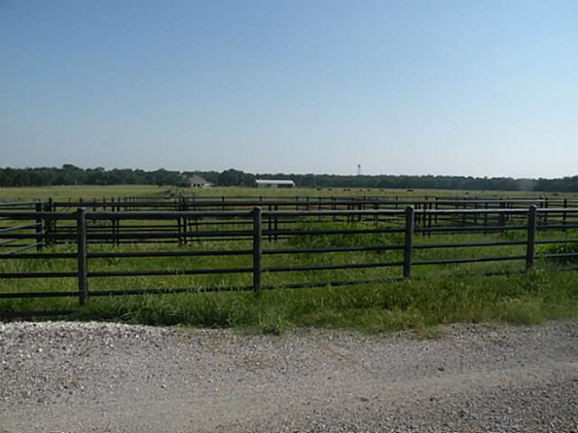 Sold Property | 38Ac. Freeman Road Krum, Texas 76249 18