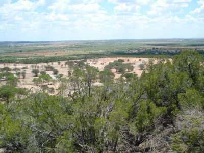 Sold Property | 110 SANDSTONE Court Tuscola, Texas 79562 1
