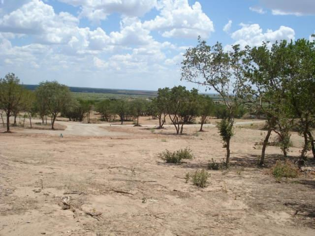 Sold Property | 110 SANDSTONE Court Tuscola, Texas 79562 4