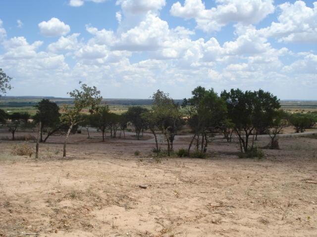 Sold Property | 110 SANDSTONE Court Tuscola, Texas 79562 5