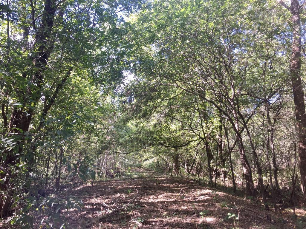 DFW Land for Sale | Rockwall TX | 000 FM 550  Rockwall, TX 75032 7