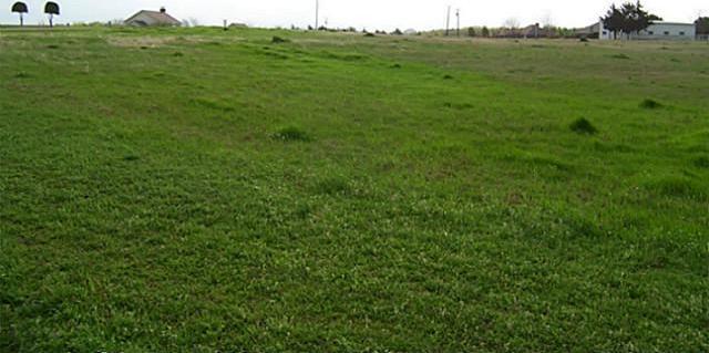 Sold Property | 2110 Lake Side  Bonham, Texas 75418 7