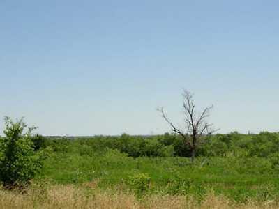 Sold Property   719 Fm 2258  Venus, Texas 76084 10