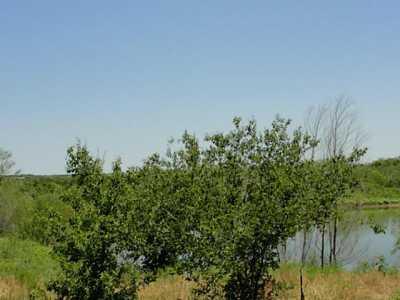 Sold Property   719 Fm 2258  Venus, Texas 76084 15