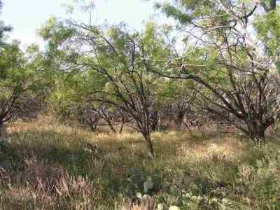 Sold Property   Lot 9 County Road 211  Brookesmith, Texas 76827 1