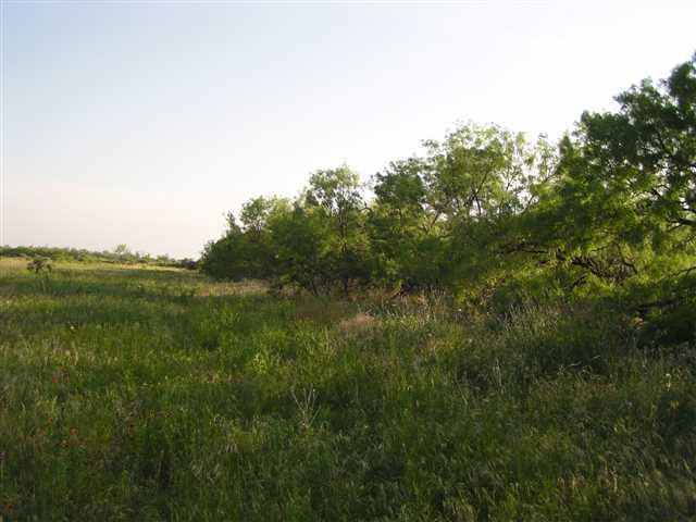 Sold Property | Lot 9 County Road 211  Brookesmith, Texas 76827 2