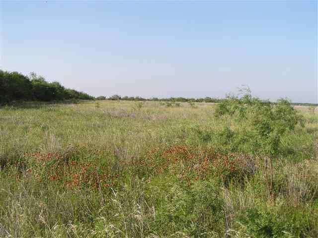 Sold Property | Lot 9 County Road 211  Brookesmith, Texas 76827 4