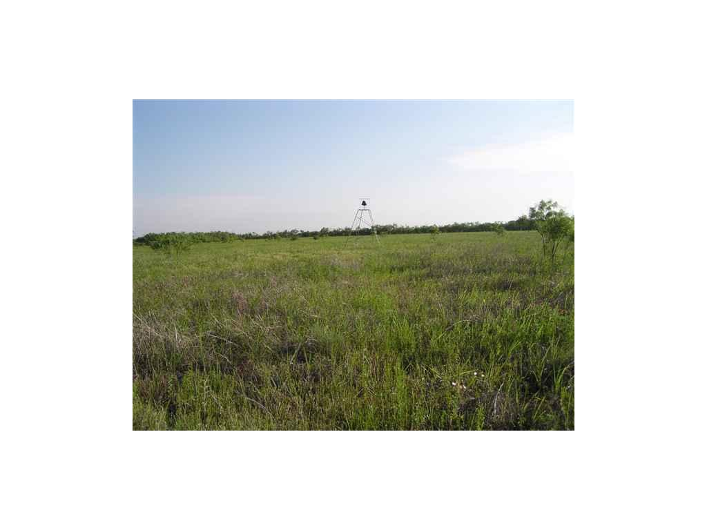 Sold Property | Lot 9 County Road 211  Brookesmith, Texas 76827 6