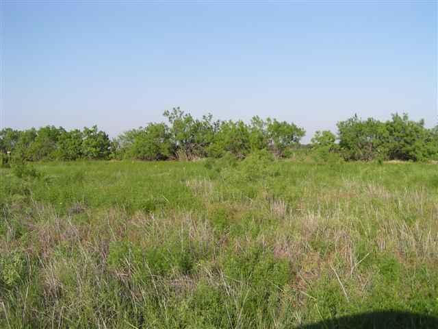Sold Property | Lot 9 County Road 211  Brookesmith, Texas 76827 7