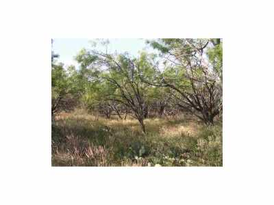 Sold Property   Lot 9 County Road 211  Brookesmith, Texas 76827 8