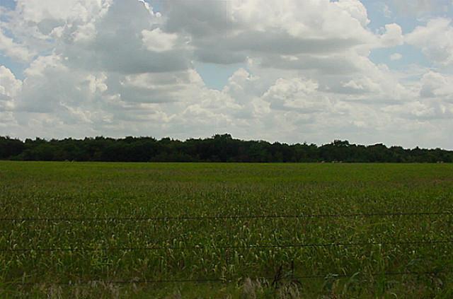 Sold Property | 000 Reed Lane Gunter, Texas 75058 1