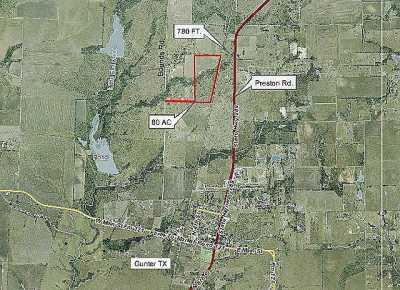 Sold Property | 000 Reed Lane Gunter, Texas 75058 4