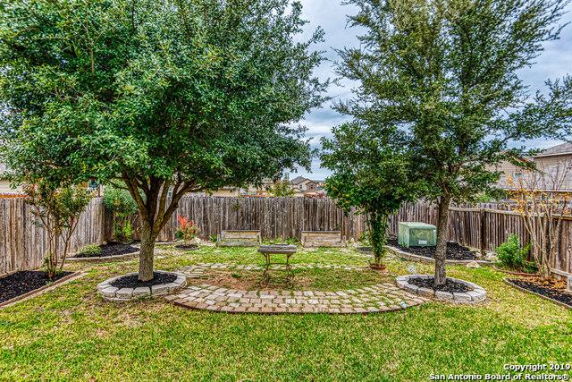 Property for Rent | 8807 SHAENWEST  San Antonio, TX 78254 21