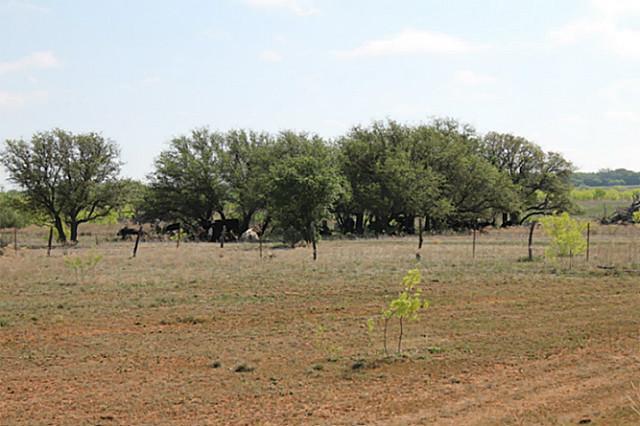 Sold Property | TBD CR 172  Burkett, Texas 76828 11
