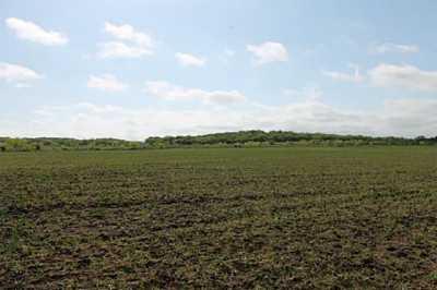 Sold Property | TBD CR 172  Burkett, Texas 76828 12