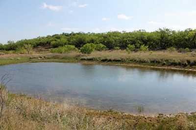 Sold Property | TBD CR 172  Burkett, Texas 76828 13