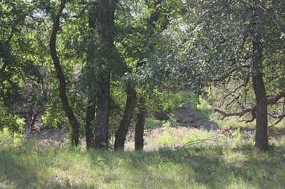 Sold Property | TBD CR 172  Burkett, Texas 76828 17