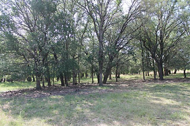 Sold Property | TBD CR 172  Burkett, Texas 76828 19