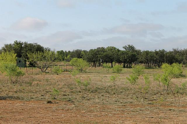 Sold Property | TBD CR 172  Burkett, Texas 76828 2