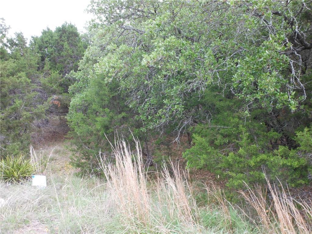 Active | 21210 Santa Rosa ave Lago Vista, TX 78645 2