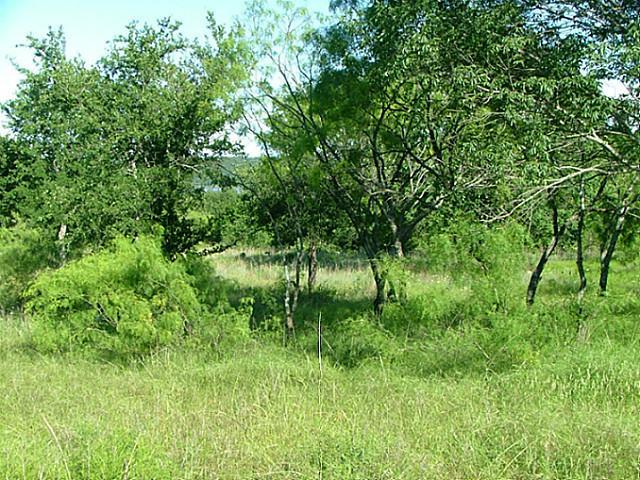 Sold Property | Lot 12 Demonbruen Court Chico, Texas 76431 2