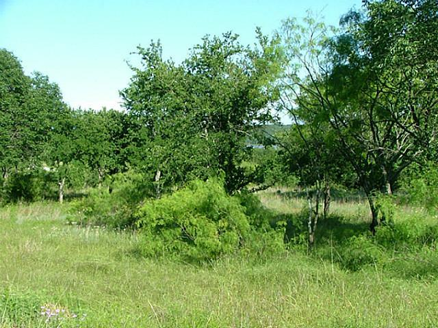 Sold Property | Lot 12 Demonbruen Court Chico, Texas 76431 3