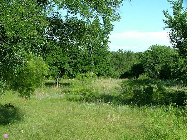 Sold Property | Lot 12 Demonbruen Court Chico, Texas 76431 8