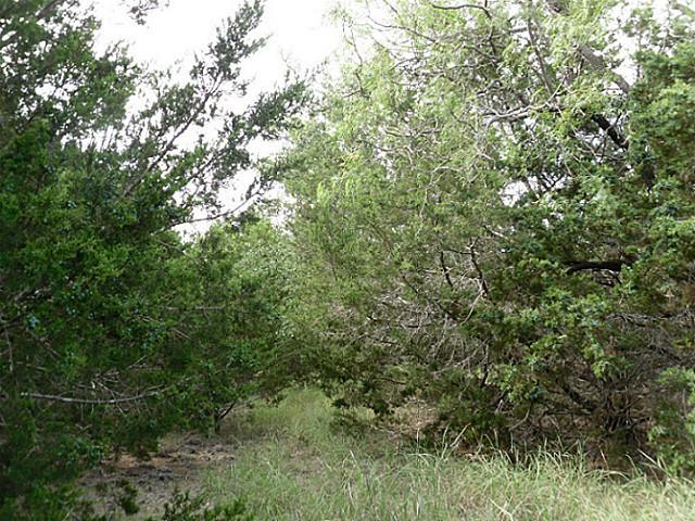 Withdrawn | TBD GREENHILL Drive Whitney, Texas 76692 13