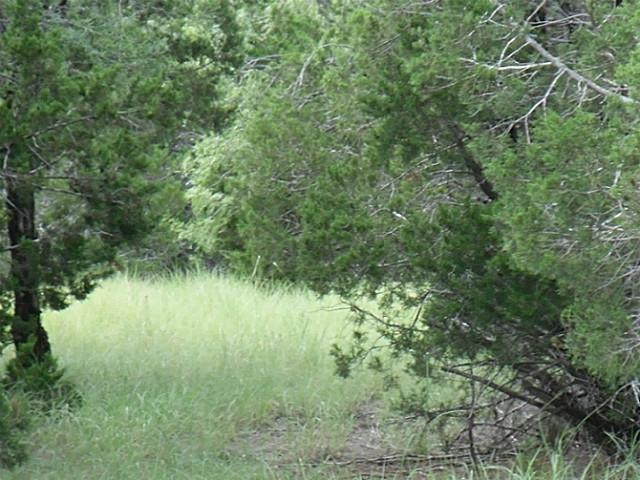 Withdrawn | TBD GREENHILL Drive Whitney, Texas 76692 1