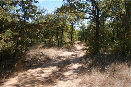 Sold Property | 00 W Hwy.180 Highway Mineral Wells, Texas 76067 0